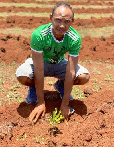 Reforestation de Madagascar : COSOURCING s'engage